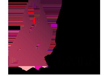 2018 Dallas Top 50 Women Lawyers